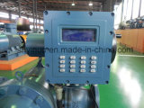 Débitmètre automatique de contrôle des lots (LZDZ)