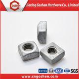 Verzinkte HDG Vierkantmuttern des DIN557 Kohlenstoffstahl-