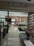 Sofa sectionnel en cuir moderne de patte d'acier inoxydable (SBL-9220)