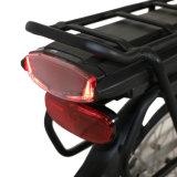 Heißer Falz-elektrisches Fahrrad BTN-20inch für Verkauf