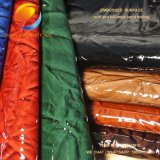 Neues kommendes Form-Gewebe des PU-Leders für Kleid Fsb17m1e