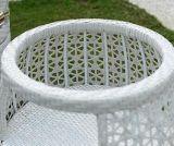 방석을%s 가진 3개 피스 PE 등나무 회전 의자 커피용 탁자 세트