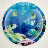 壁に取り付けられたアクリルの魚ボール