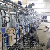 Het Systeem van de Melkende Woonkamer van de Visgraat van de Meter van de Melk van de stroom voor Koeien
