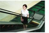 Volkslift Sicherheits-Innenrolltreppe mit Grad Vvvf35 und 30 Grad