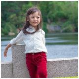 Camisa linda del algodón de la ropa de las muchachas de Phoebee para el resorte/el otoño