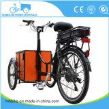 Populäres Dreiradelektrische Ladung-Fahrräder vom Fabrik-Lieferanten