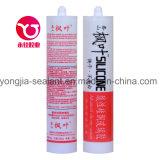 Puate d'étanchéité en verre acétique d'adhésif/silicones (exercice financier)