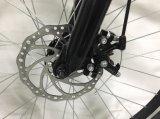 26inch 250 와트 형식 전기 스포츠 자전거