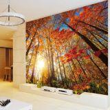 Zoll gedruckte farbenreiche moderne Art-Tapeten-umweltsmäßigwandbildas