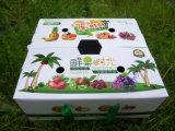 安い価格の中国の工場供給のタバコ入れのボール紙