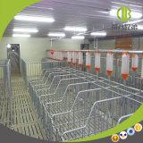 Система автоматического фидера цепи оборудования свиньи автоматическая подавая