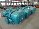 Grande High Efficiency Roots Blower per Industrial Production