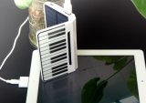 셀룰라 전화와 Portable Gadgets Used High Capacity Solar Charger