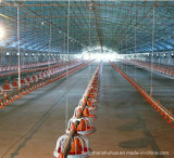 Chicken Houseのための自動Poultry Farm Equipment
