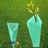 Protector plástico del árbol