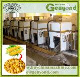 Usine de fabrication automatique de maïs de bébé d'IQF