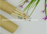 Matite di legno lunghe di colore in contenitore di carta kraft