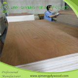 ポプラCore 2.5mm Bintangor Plywood FromリンイーQimeng