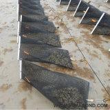 Maglia della gabbia del cestino di sviluppo dell'ostrica di perla degli S.U.A. per acquicoltura