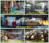 Planta nova do biogás do desperdício Waste e animal da cozinha popular do projeto para gerar a eletricidade, central energética do biogás