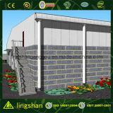 Coût de construction de l'entrepôt en acier pré-fabriqué en Chine (LS-SS-212)