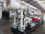 groupes électrogènes du gaz 5MW/produisant du jeu