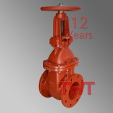 BS5163 DIN5532 Fire Protection Gate Valve