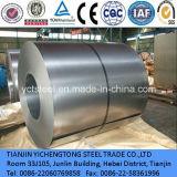 Grands feuille extérieure lumineuse de bobine d'acier inoxydable du support 304