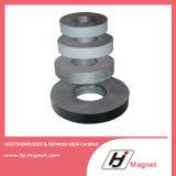 Qualität kundenspezifischer Ring-permanenter Ferrit-Magnet für Industrie