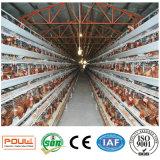 Poultech automático uma gaiola da galinha da camada da bateria do frame