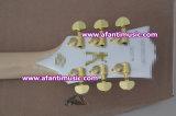 Langspielplatte-kundenspezifische Art/Afanti elektrische Gitarre (CST-223)