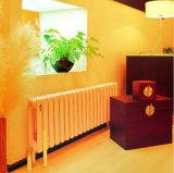 Radiadores del agua del sistema de calefacción de hogares