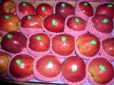 판지 패킹을%s 가진 중국 신선한 빨간 사과
