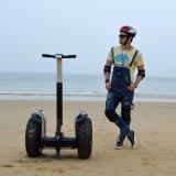RäderChariot Großhandelsdes im freiensport-Fahrzeug-Selbstelektrischer Roller-2