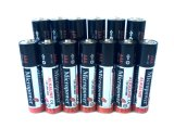 Alkalische Fernsteuerungsbatterie AAA/Lr03