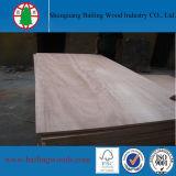 Okoume/madera contrachapada de la chapa 18mm/21m m del pino para la construcción