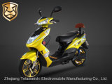 350W Young destro Power Brushless Motor Electric Bike