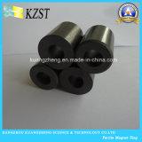 De permanente Ringen van de Magneet van het Ferriet Veelpolige voor de Motor van gelijkstroom