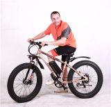 電気自転車によってモーターを備えられる自転車Eのバイク