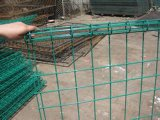 정원을%s 좋은 Looking Double Loop Wire Mesh Fence