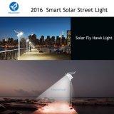 Réverbère solaire de 2700 lumens avec le système de d'éclairage actionné solaire