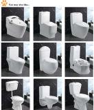 Изделия самомоднейшей ванны тщеты ванной комнаты двухкусочной белой санитарные (EDA66153)
