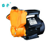 Cast doméstico Iron Hot y Uno mismo-Priming Pump From Rijing Pump (JLM60-400) de Cold Water