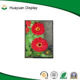 Индикация LCD цвета Pin экрана касания 37 пиксела 240*320