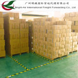 Entrega barata do transporte do frete de mar dos custos de entrega FCL LCL de China a no mundo inteiro