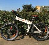 Bicicleta elétrica material do frame sim Foldable e de alumínio (OKM-899)