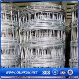 Rete fissa del campo del pascolo dell'azienda agricola della fabbrica della Cina con il certificato di iso