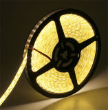 Tiras impermeables del LED --Flexible