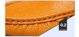 熱い販売のFoldable円形のつま先の平らな人の靴(DD 06)